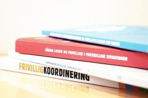 Ingerfair bøger