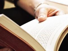 Læsning fra Ingerfair